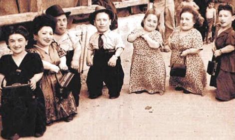 auschwitz-dwarfs