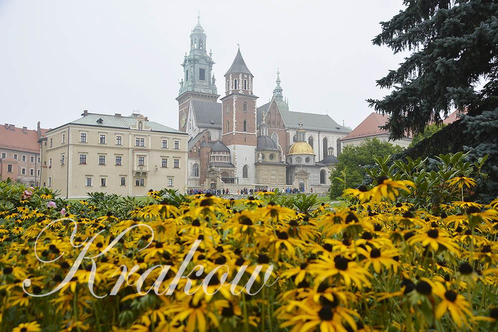 krakow-cover