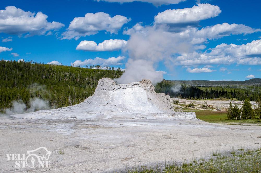 DSC_4617Castle geyser