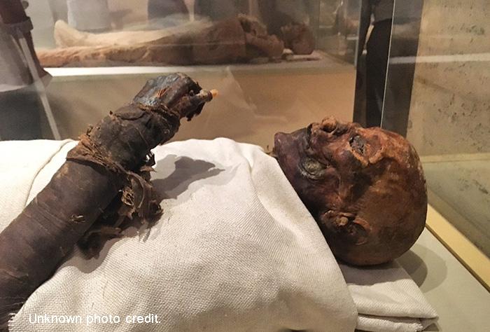 Hatshepsut mummy.jpg