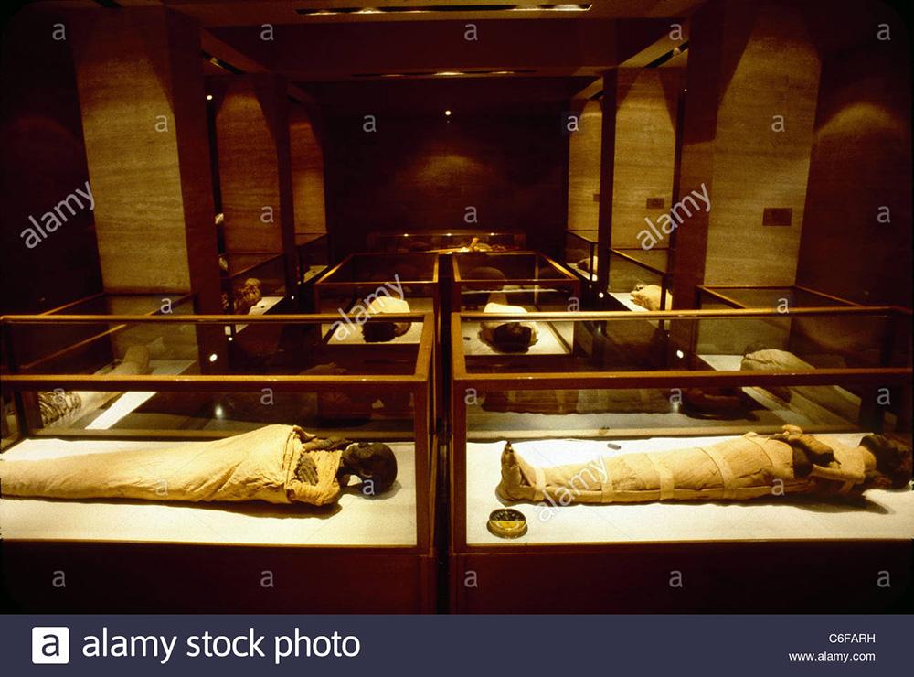 the-royal-mummy-room-at-the-egyptian-museum-C6FARH.jpg