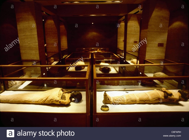 the-royal-mummy-room-at-the-egyptian-museum-C6FARH.jpg